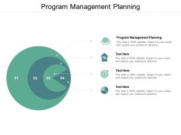 Program Management Planning Ppt Powerpoint Presentation Gallery Infographics Cpb