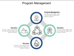 Program Management Ppt Powerpoint Presentation Gallery Clipart Images Cpb