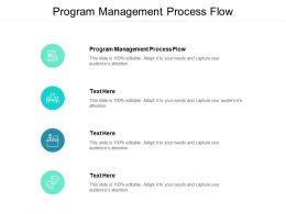 Program Management Process Flow Ppt Powerpoint Presentation Infographic Cpb