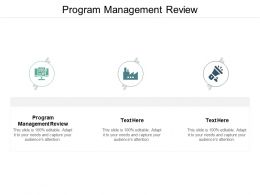 Program Management Review Ppt Powerpoint Presentation Visual Aids Example 2015 Cpb