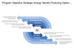 Program Objective Strategic Energy Identify Financing Option Convene Stakeholders
