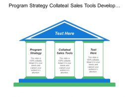 Program Strategy Collateal Sales Tools Develop Product Idea