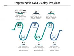 Programmatic B2b Display Practices Ppt Powerpoint Presentation Visual Aids Background Images Cpb
