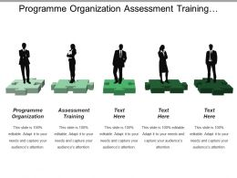 Programme Organization Assessment Training Programme Evaluation Information System