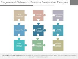 Programmed Statements Business Presentation Examples