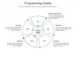 Programming Assets Ppt Powerpoint Presentation Ideas Background Designs Cpb