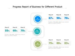 Progress Report Of Business For Different Product