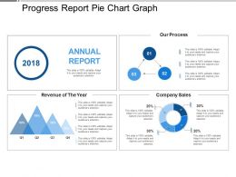 Progress Report Pie Chart Graph