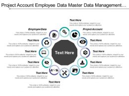 Project Account Employee Data Master Data Management Service