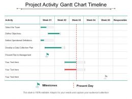 Project Activity Gantt Chart Timeline