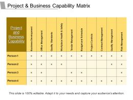 Project And Business Capability Matrix Powerpoint Presentation