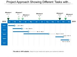 Project Approach Showing Different Tasks With Milestone Of The Twelve Month