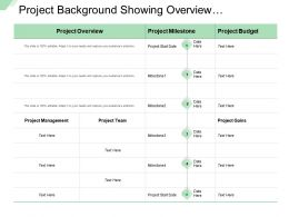 Project Background Showing Overview Management Team Budget Gains