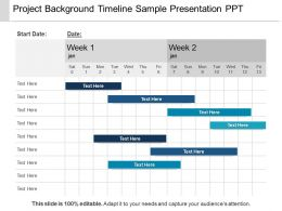 Project Background Timeline Sample Presentation Ppt