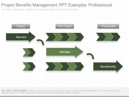 Project Benefits Management Ppt Examples Professional