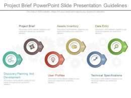 Project Brief Powerpoint Slide Presentation Guidelines