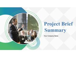 Project Brief Summary Powerpoint Presentation Slides