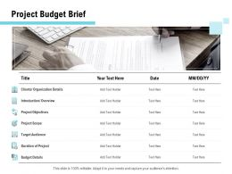 Project Budget Brief Ppt Powerpoint Presentation Pictures Layout Ideas