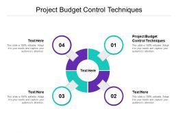 Project Budget Control Techniques Ppt Powerpoint Presentation Graphics Cpb