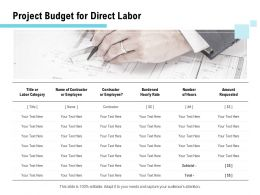 Project Budget For Direct Labor Ppt Powerpoint Presentation Gallery Elements