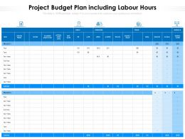 Project Budget Plan Including Labour Hours