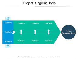 Project Budgeting Tools Ppt Powerpoint Presentation Gallery Icons Cpb