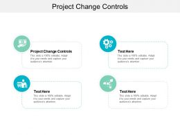 Project Change Controls Ppt Powerpoint Presentation Gallery Examples Cpb