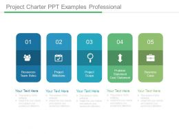 Project Charter Ppt Examples Professional