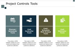 Project Controls Tools Risk Analyst Ppt Powerpoint Presentation Gallery Graphics