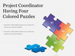 Project Coordinator Having Four Colored Puzzles