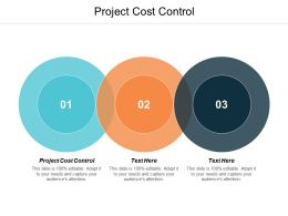 Project Cost Control Ppt Powerpoint Presentation Slides Clipart Images Cpb