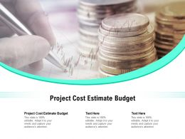 Project Cost Estimate Budget Ppt Powerpoint Presentation Show Sample Cpb