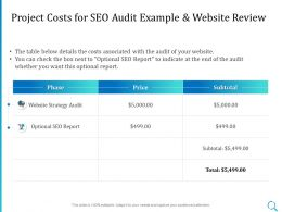 Project Costs For SEO Audit Example And Website Review Ppt Powerpoint Professional