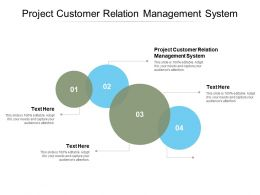 Project Customer Relation Management System Ppt Powerpoint Presentation Icon Cpb