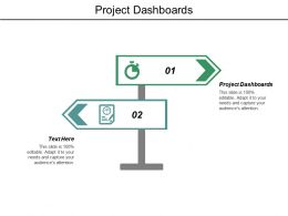 Project Dashboards Ppt Powerpoint Presentation File Brochure Cpb