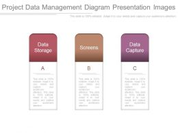 Project Data Management Diagram Presentation Images