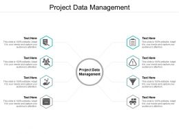 Project Data Management Ppt Powerpoint Presentation Ideas Templates Cpb