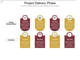 Project Delivery Phase Ppt Powerpoint Presentation Portfolio Example Cpb