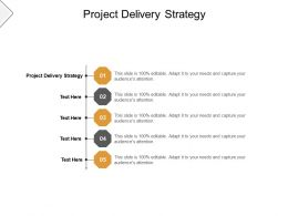 Project Delivery Strategy Ppt Powerpoint Presentation Layouts Vector Cpb