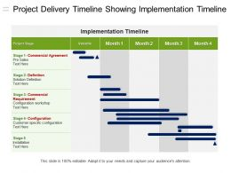Project Delivery Timeline Showing Implementation Timeline