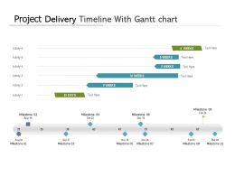 Project Delivery Timeline With Gantt Chart