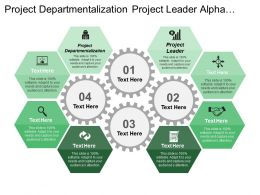 Project Departmentalization Project Leader Alpha Project Beta Project