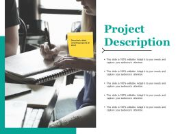 Project Description Ppt Infographic Template Layout Ideas