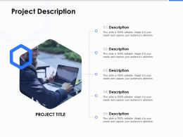 Project Description Ppt Powerpoint Presentation Infographic Template Pictures