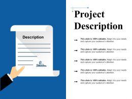 Project Description Ppt Slide Styles