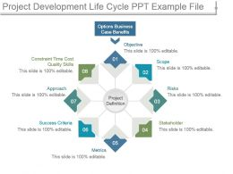 Project Development Life Cycle Ppt Example File