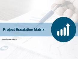 Project Escalation Matrix Powerpoint Presentation Slides