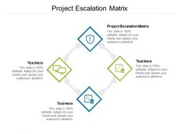 Project Escalation Matrix Ppt Powerpoint Presentation Professional Background Designs Cpb