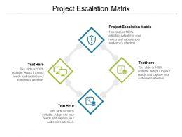 Project Escalation Matrix Ppt Powerpoint Presentation Professional Background Designs Cpb