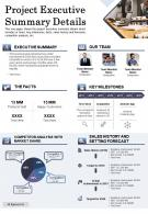 Project Executive Summary Details Presentation Report Infographic PPT PDF Document